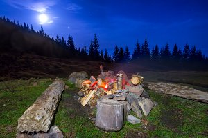 Campfire in the night forest