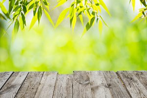 Green leaves with wooden table