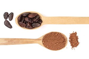 cocoa bean and cocoa powder in wooden spoon isolated on white background top view