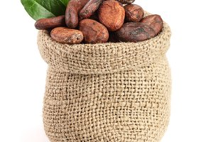 Cocoa beans in bag with leaves isolated on white background