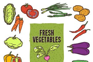 Vegetable sketch icons set