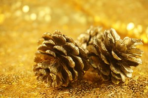 Gold Pinecone Holiday Photo