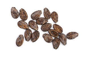 watermelon seeds isolated on white background. Top view