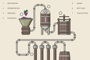 Winemaking infographic illustration