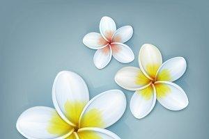 Tropical plant flowers