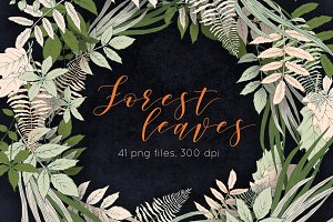 Forest Leaves Illustration set