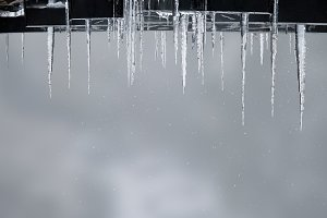 Beautiful icicles on winter background. The snow falls
