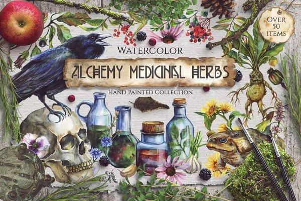 Watercolor Alchemy Medicinal Herbs