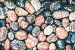 Colorful wet pebbles background