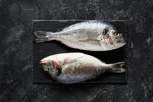 Fresh sea bream or dorado fish on slate background