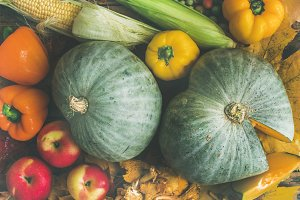 Fall colorful vegetables assortment