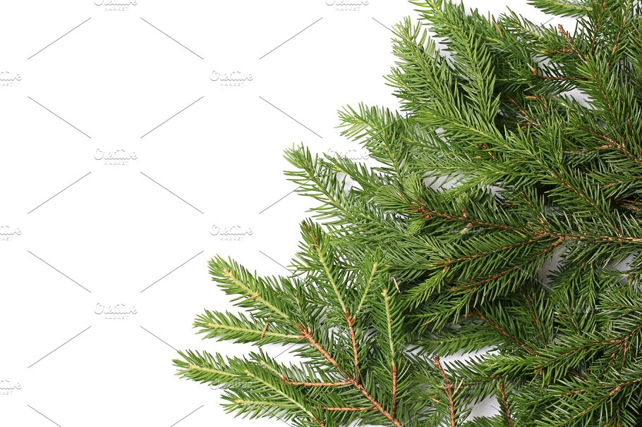 Fir Tree Branches Isolated On White Background Christmas Holiday Photos Creative Market