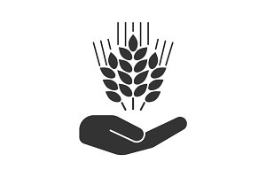 Open hand with wheat ears glyph icon