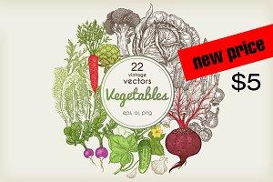 Set 22 hand drawn vegetables.