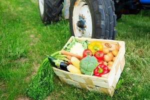 Box With Vegetables Next To A Tractor