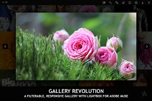 Gallery Revolution - Adobe Muse