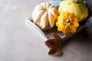 Autumn background with pumpkins on tray