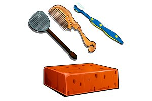 Toothbrush, hair brush, fly swatter and brick