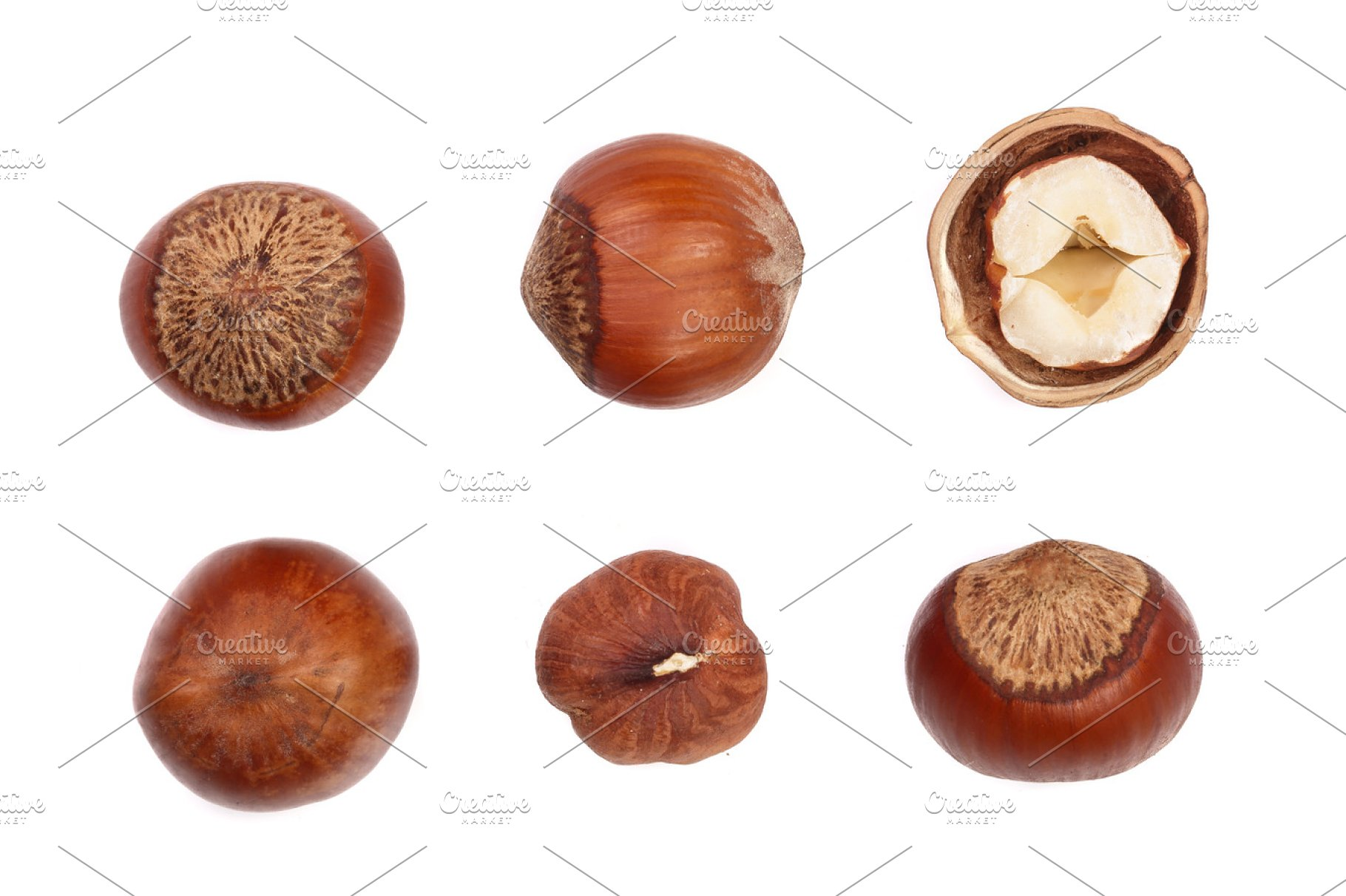 Hazelnut Isolated On White Background Set Or Collection Top View