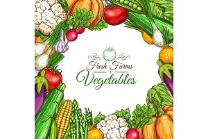 Vector sketch poster of fam vegetables or veggies