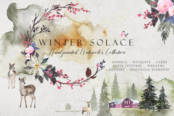 Winter Solace