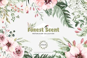 Watercolor Forest Scent