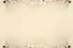 Cherry blossom on beige, frame