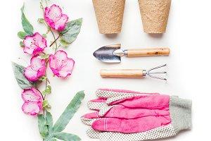 Gardening or planting flat lay