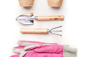 Gardening or planting tools on white