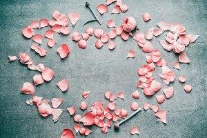 Pink petals floral frame