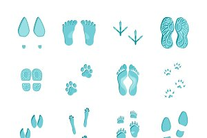 Ice blue color footprints