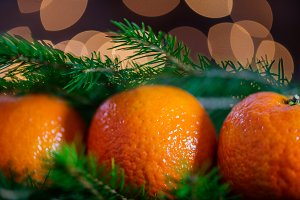 Fresh Clementines or Tangerines, Xmas Lights and Xmas Tree Branc