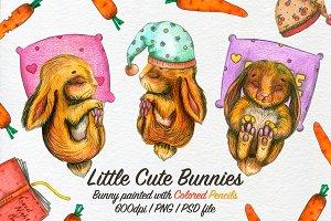 Little Cute Bunnies