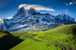 Panoramic summer landscape with Ushba mountain snowy peak