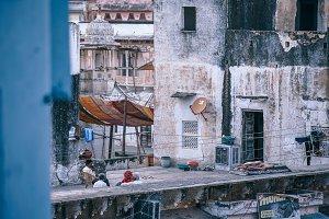 Cozy Pushkar Rooftop