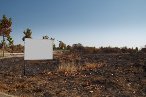 Burned plot with blank billboard