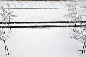 Car footsteps in the snow