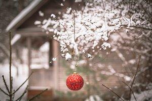 Christmas ball on a tree