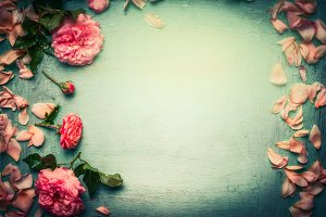 Pink roses and petals, retro styled