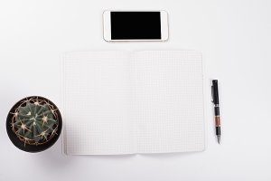 Smartphone next to cactus, open notebook and a ballpoint pen on white background. Isolated. Workspace.