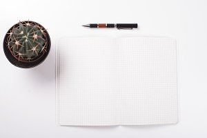 Open and empty notepad next to pen and a cactus on white background. Isolated.