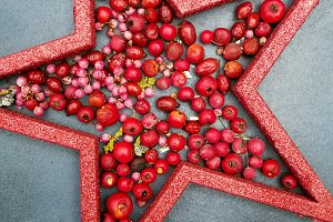 Star and red berries card