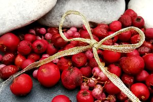 White stones and red berries card