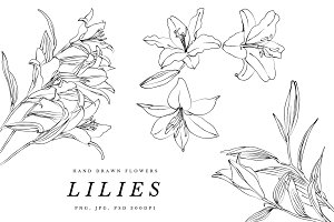 Lilies and Lotus Florals