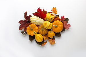 Fall pumpkins, gourds & leaves