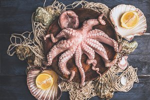 Raw Octopus in bowl