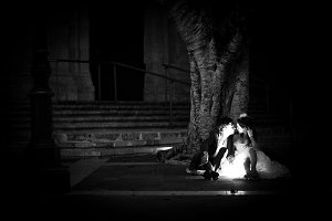 Wedding couple kissing under tree