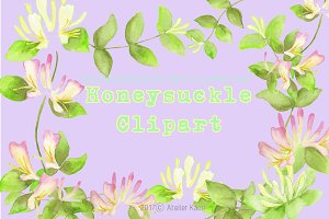 Honeysuckle Clipart
