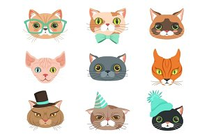 Set of cute cats heads of different breeds, colorful character vector Illustrations