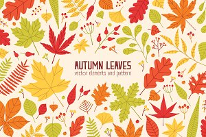 Set and pattern autumn tree leaves